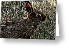 Wild Rabbit Greeting Card