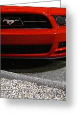 Wild Red Mustang Greeting Card