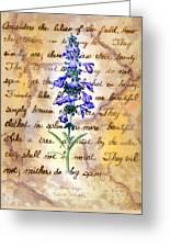 Wild Sage Greeting Card by Linda Pope