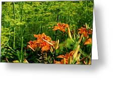 Wild Tiger Lilies 2 Greeting Card