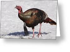 Wild Turkey In The Snow Greeting Card