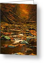 Wild Valley Greeting Card