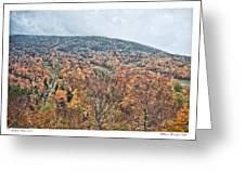 Wildcat Mountain Gold Greeting Card