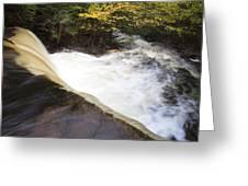 Wilderness Waterfall Autumn Stream Greeting Card