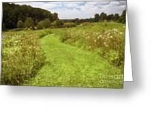 Wildflower Field Morning Greeting Card