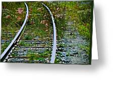 Wildflower Railroad Greeting Card