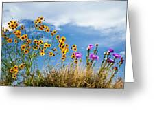 Wildflower Weed Greeting Card