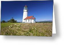 Wildflowers And Cape Blanco Lighthouse Greeting Card