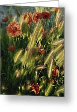 Wildflowers And Grass Tufts In Provence Greeting Card