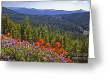 Wildflowers And Mountaintop View Greeting Card by Ellen Thane and Photo Researchers