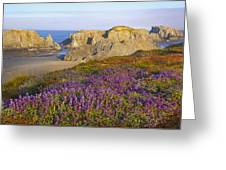 Wildflowers And Rock Formations Along Greeting Card