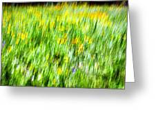 Wildflowers And Wind Greeting Card
