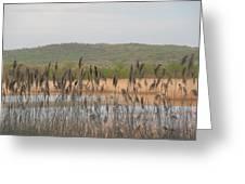 Wildlife Refuge Greeting Card