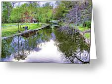 Williston Mill Stream Greeting Card