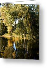 Willow Mirror Greeting Card by LeeAnn McLaneGoetz McLaneGoetzStudioLLCcom