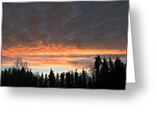 Willow Sunrise Greeting Card