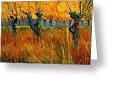 Willows At Sunset Greeting Card