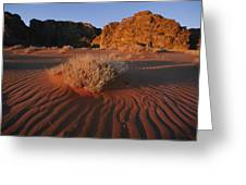 Wind Makes Waves In The Sand Greeting Card