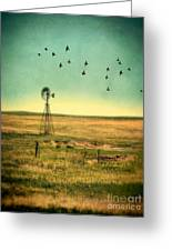 Windmill And Birds Greeting Card