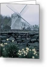 Windmill And Daffodils  Greeting Card