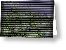 Window Blinds Prints Greeting Card