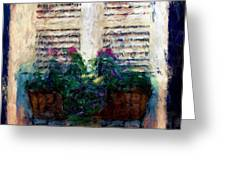 Window Box 2 Greeting Card by Donna Bentley