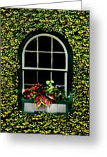 Window On An Ivy Covered Wall Greeting Card