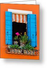 Window Plants Greeting Card