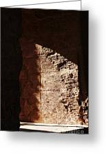 Window To The Shadows Greeting Card