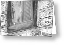 Window With Screen Greeting Card