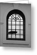 Windows On The Beach In Black And White Greeting Card