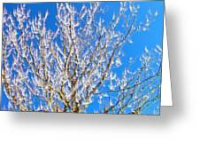 Winds Upon The Branchs II Greeting Card