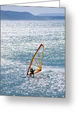 Windsurfer, Baja, Mexico Greeting Card