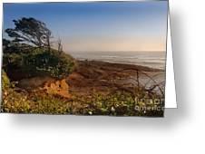 Windswept Coast Greeting Card