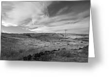 Windswept Hills Bw Greeting Card