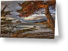 Windy Cove Greeting Card