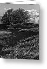 Windy Hill Greeting Card