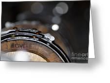 Wine Barrels In Oak Greeting Card