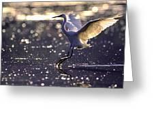 Wingdance Greeting Card
