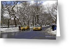 Winter - 2011 Greeting Card