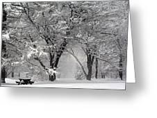 Winter 0002 Greeting Card