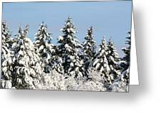 Winter 0005 Greeting Card