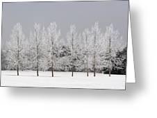 Winter, Calgary, Alberta, Canada Greeting Card