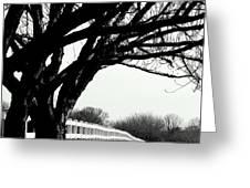 Winter Cherry Greeting Card
