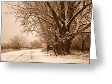 Winter Country Road Greeting Card