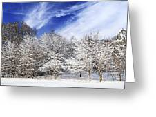 Winter Forest Covered With Snow Greeting Card