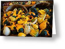 Winter Gourds  Greeting Card