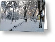 Winter In Mako Greeting Card