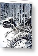 Winter In The Henhouse Greeting Card