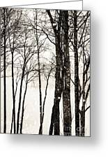 Winter Landscape On Snowy Day Greeting Card